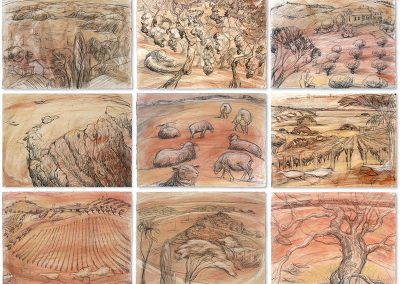 Fresh 2 - Waiheke landscape drawings