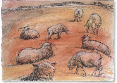 Fresh 2 (detail) - Waiheke landscape drawings
