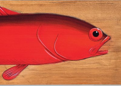 Flagtailed Rock Cod (detail)
